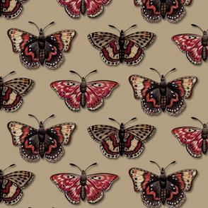 Butterflies - Butterfly Pattern In Red, Orange & Tan