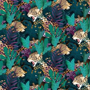 jaguar jungle