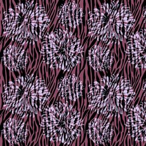 zinnia marsala zebra