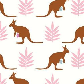 Kangaroos_on white_©Solvejg Makaretz