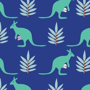 Kangaroos_blue_©Solvejg Makaretz