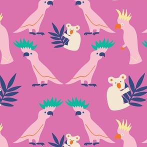 Kookaburra_pink_Solvejg Makaretz