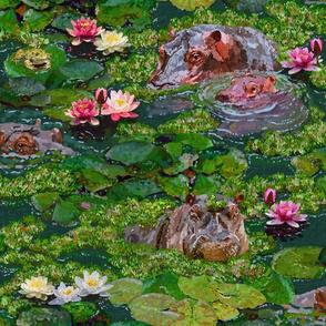 Hippo Paradise