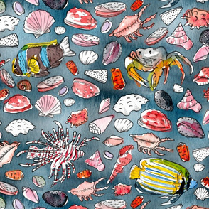 fish and shells