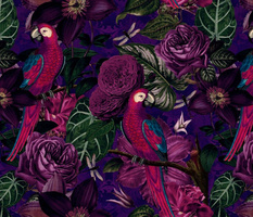 Dark Jungle Birds