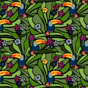 Exotic Tucan Rainforest