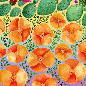 Desert In Full Bloom