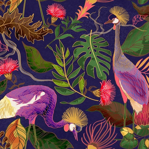 African Cranes