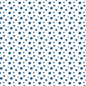 Classic Blue Stars