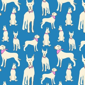 Illustrated Great Danes