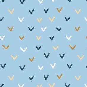 Checkmarks on light blue background