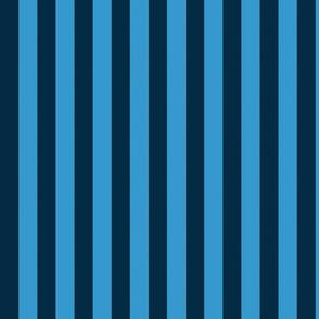 basic stripes | light blue on blue