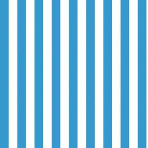 basic stripes | white on blue