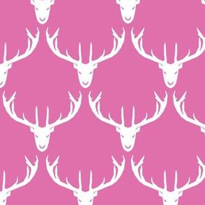 Oh Deer in Pink