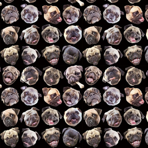 Pug Mugs black small