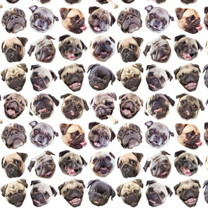 Pug Mugs white small