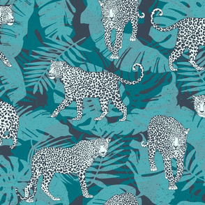 Leopards in the jungle