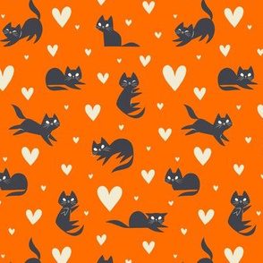 Smitten Kittens (Orange)