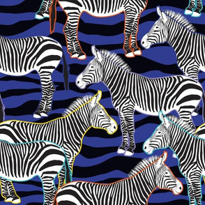 Crazy Zebra
