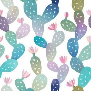 Cacti Pattern on White Background