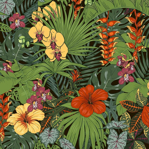 tropical plant 19-01