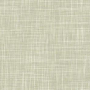 Solid Linen - Light Green (Monkeys) - Linen Texture