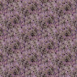 Blossom Photographic Hydrangea Florets