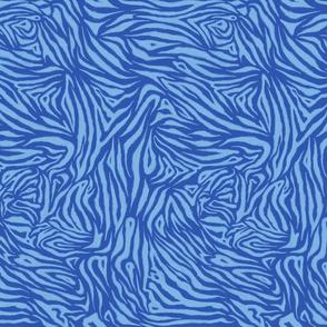 Zebra Sketch Medium (Blues)