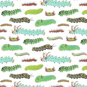 caterpillars pattern 2