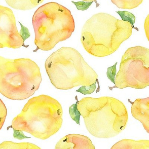 Watercolor pears yellow red on white background