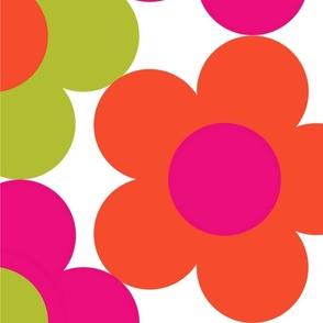 Pop Art Daisy Pink Orange Green