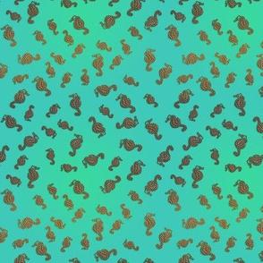 Little Copper Seahorses in Aqua Seas