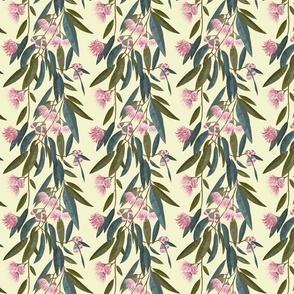 Australian Flora - Pink Eucalyptus small scale
