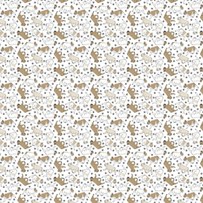 Tiny Trotting fawn French Bulldogs and paw prints - white