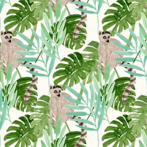 lemur in jungle-large scale