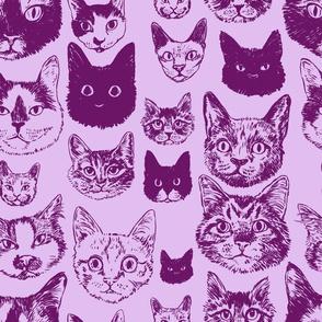 cats - lavender + plum