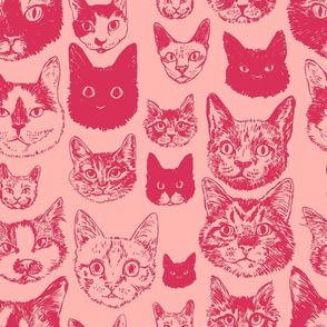 cats - blush + coral