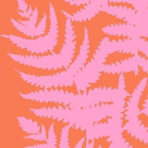 Alma // Taffy Pink on Papaya