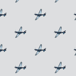 Tiger in the Sky Vintage Aircraft Blue Gray