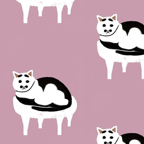 Black and White Cat - Millennials Pink
