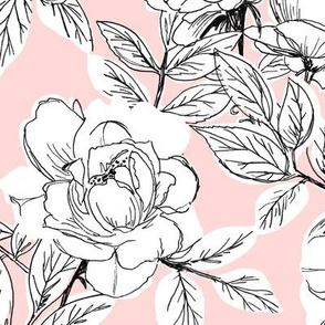 Rose Sketch Floral - Pink - Large Scale