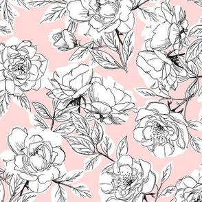 Rose Sketch Floral - Pink