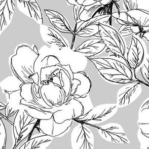 Rose Sketch Floral - Grey - Large Scale