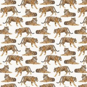 Watercolor Tigers Jungle Cats - Orange - Medium Scale