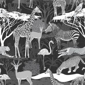 Savannah Fauna (Black&White)
