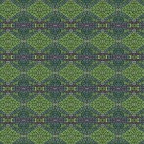 milkweed11