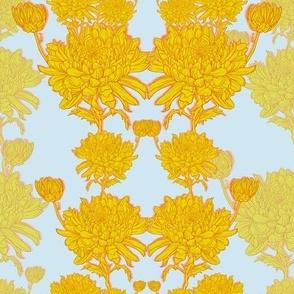 Chrysanthemums in yellow