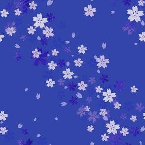 Dark blue Sakura