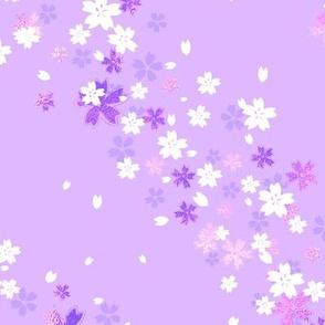 Light purple Sakura