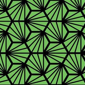 Geometric Pattern: Hexagon Ray: Green Black